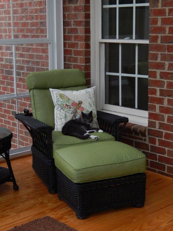 Columbus porch for happy cat